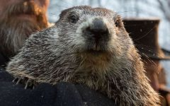 Phil the groundhog makes his prediction in 2021.